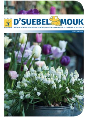 Suebelmouk_197_avril