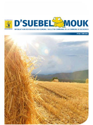 Suebelmouk_199_juin