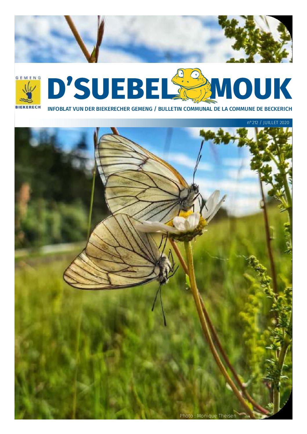 Suebelmouk 212 juillet 2020
