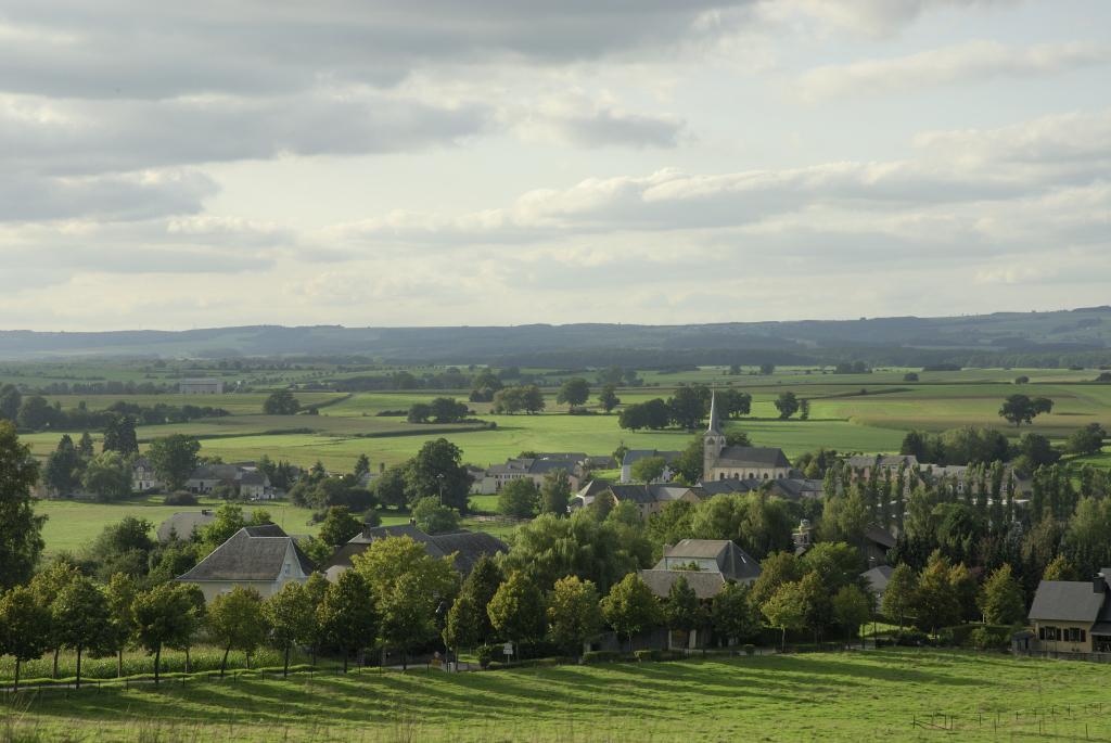 vue paysage avec arbres