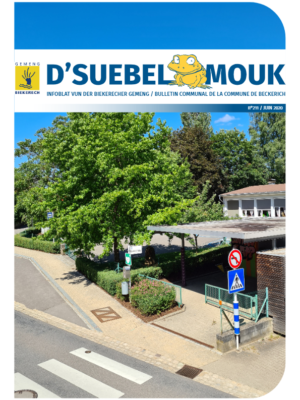 Suebelmouk 211 juin 2020