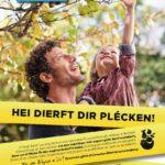 Aktioun Gielt Band ¦ Action Ruban jaune